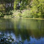Fishing in Milton Keynes 0888