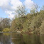Fishing in Milton Keynes 5525