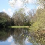 Trout fishing in Bedfordshire 5530