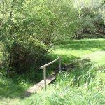 Trout fishing in Buckinghamshire 0910