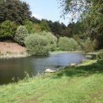 Trout fishing in Buckinghamshire 0915