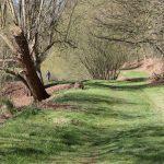 Trout fishing in Buckinghamshire 5510