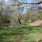 Trout fishing in Buckinghamshire 5511