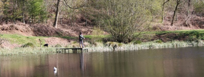Trout fishing south east 5519